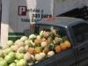 Fruitvervoer - Huehuetenango